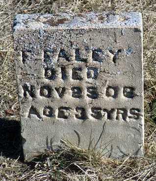 FALEY, F. - Yavapai County, Arizona | F. FALEY - Arizona Gravestone Photos