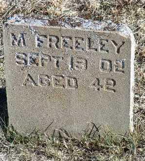 FREELEY, MIKE - Yavapai County, Arizona | MIKE FREELEY - Arizona Gravestone Photos