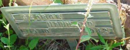 HAMMOND, GEORGE E. - Yavapai County, Arizona | GEORGE E. HAMMOND - Arizona Gravestone Photos