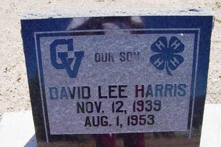 HARRIS, DAVID LEE - Yavapai County, Arizona | DAVID LEE HARRIS - Arizona Gravestone Photos