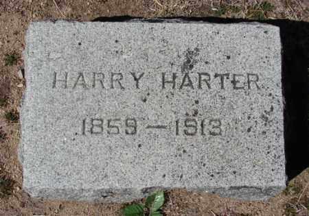 HARTER, HARRY H. - Yavapai County, Arizona | HARRY H. HARTER - Arizona Gravestone Photos