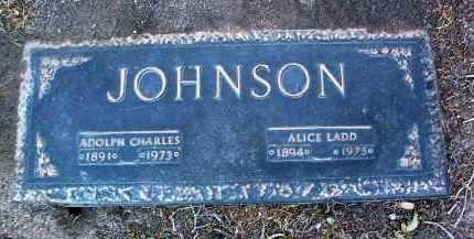 BITNER JOHNSON, ALICE - Yavapai County, Arizona | ALICE BITNER JOHNSON - Arizona Gravestone Photos