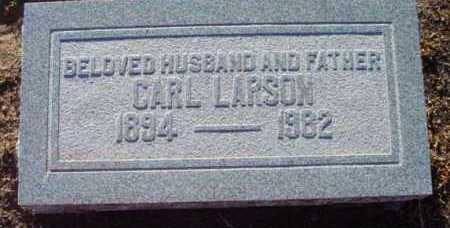 LARSON, CARL F. - Yavapai County, Arizona | CARL F. LARSON - Arizona Gravestone Photos