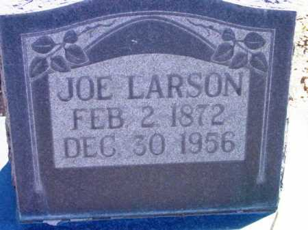 LARSON, JOE - Yavapai County, Arizona | JOE LARSON - Arizona Gravestone Photos