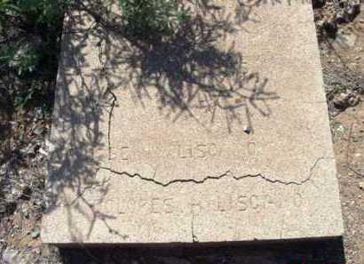 HERNANDEZ LISCANO, D. - Yavapai County, Arizona | D. HERNANDEZ LISCANO - Arizona Gravestone Photos