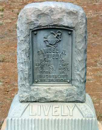 LIVELY, SAMUEL NEWTON - Yavapai County, Arizona | SAMUEL NEWTON LIVELY - Arizona Gravestone Photos