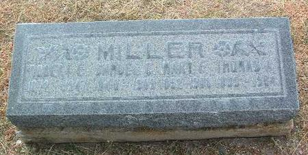 MILLER, MARY FRANCES - Yavapai County, Arizona | MARY FRANCES MILLER - Arizona Gravestone Photos