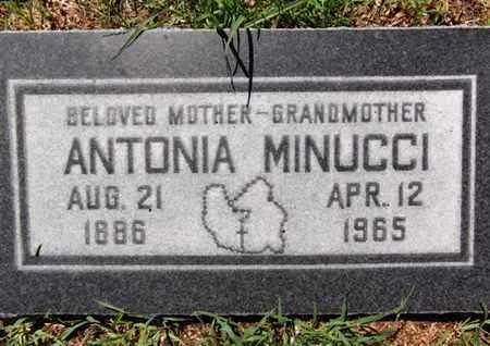MINUCCI, ANTONIA - Yavapai County, Arizona   ANTONIA MINUCCI - Arizona Gravestone Photos