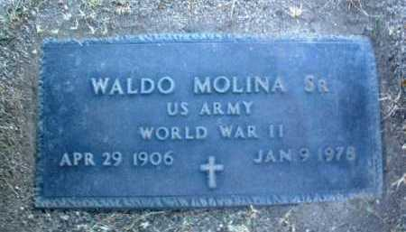 MOLINA, WALDO, SR. - Yavapai County, Arizona | WALDO, SR. MOLINA - Arizona Gravestone Photos