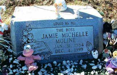 MOLINE, JAMIE MICHELLE - Yavapai County, Arizona | JAMIE MICHELLE MOLINE - Arizona Gravestone Photos