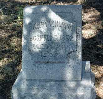 MURPHY, HENRY WESTON - Yavapai County, Arizona | HENRY WESTON MURPHY - Arizona Gravestone Photos