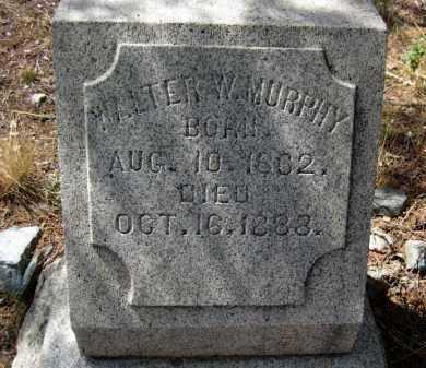 MURPHY, WALTER W. - Yavapai County, Arizona   WALTER W. MURPHY - Arizona Gravestone Photos