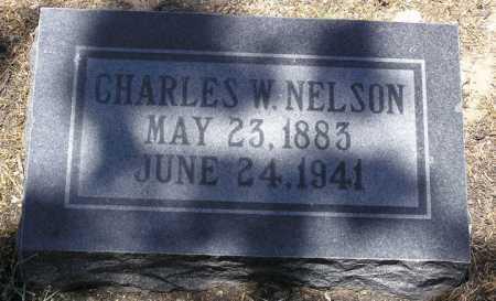 NELSON, CHARLES WILLIAM - Yavapai County, Arizona   CHARLES WILLIAM NELSON - Arizona Gravestone Photos