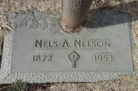 NELSON, NELS A. - Yavapai County, Arizona | NELS A. NELSON - Arizona Gravestone Photos