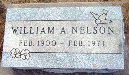 NELSON, WILLIAM ASHLEY - Yavapai County, Arizona | WILLIAM ASHLEY NELSON - Arizona Gravestone Photos