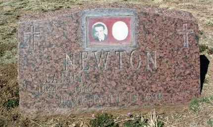 NEWTON, RAYMOND LANIER - Yavapai County, Arizona | RAYMOND LANIER NEWTON - Arizona Gravestone Photos