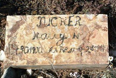 TUCKER, HARRY NEWTON - Yavapai County, Arizona   HARRY NEWTON TUCKER - Arizona Gravestone Photos