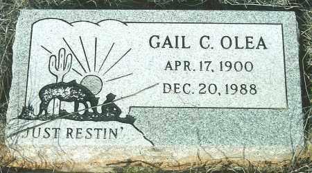 PALMER, GAIL C. - Yavapai County, Arizona | GAIL C. PALMER - Arizona Gravestone Photos