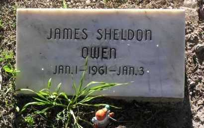 OWEN, JAMES SHELDON - Yavapai County, Arizona   JAMES SHELDON OWEN - Arizona Gravestone Photos