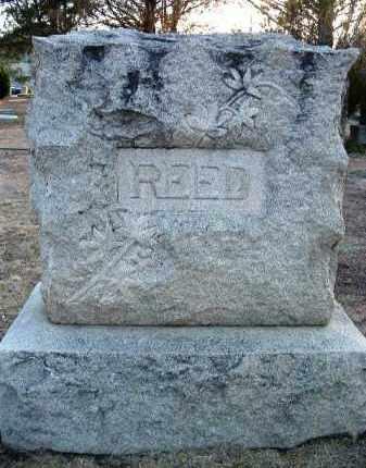 REED, FAMILY HEADSTONE - Yavapai County, Arizona | FAMILY HEADSTONE REED - Arizona Gravestone Photos