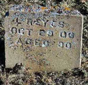 REYES, LUIS - Yavapai County, Arizona   LUIS REYES - Arizona Gravestone Photos