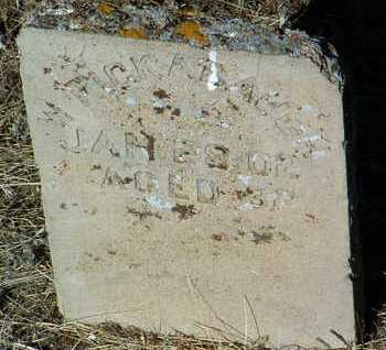 RICKABAUGH, WILLIAM J. - Yavapai County, Arizona | WILLIAM J. RICKABAUGH - Arizona Gravestone Photos