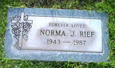 RIEF, NORMA J. - Yavapai County, Arizona | NORMA J. RIEF - Arizona Gravestone Photos