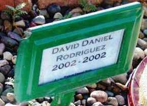 RODRIGUEZ, DAVID D. - Yavapai County, Arizona | DAVID D. RODRIGUEZ - Arizona Gravestone Photos