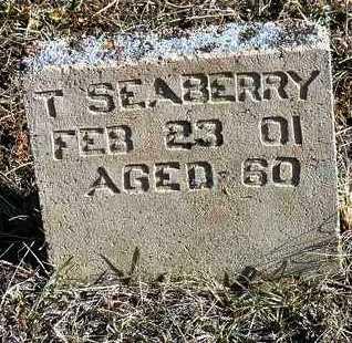 SEABERRY, T. - Yavapai County, Arizona   T. SEABERRY - Arizona Gravestone Photos