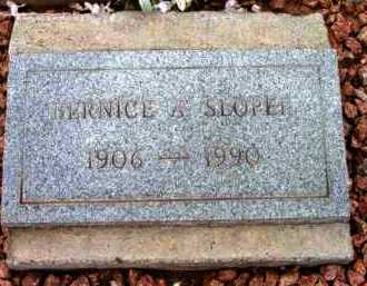 NICHOLSON SLOPER, B. - Yavapai County, Arizona | B. NICHOLSON SLOPER - Arizona Gravestone Photos