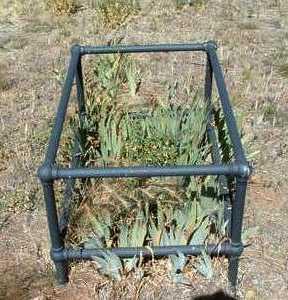 NAJERA, PATRICIO - Yavapai County, Arizona   PATRICIO NAJERA - Arizona Gravestone Photos