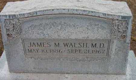 WALSH, JAMES M.  (MD) - Yavapai County, Arizona | JAMES M.  (MD) WALSH - Arizona Gravestone Photos