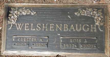 MITTNER WELSHENBAUGH, LOIS JUNE - Yavapai County, Arizona | LOIS JUNE MITTNER WELSHENBAUGH - Arizona Gravestone Photos