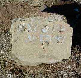 WILCOX, HARRY - Yavapai County, Arizona | HARRY WILCOX - Arizona Gravestone Photos