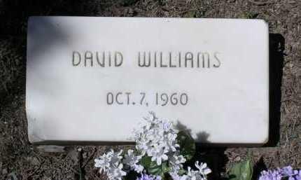 WILLIAMS, DAVID - Yavapai County, Arizona | DAVID WILLIAMS - Arizona Gravestone Photos