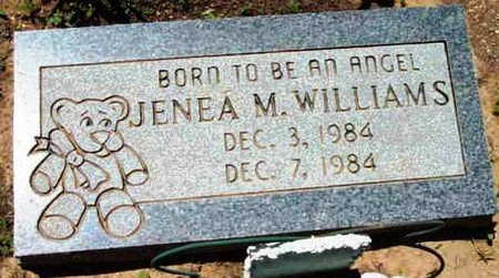 WILLIAMS, JENNA M. - Yavapai County, Arizona   JENNA M. WILLIAMS - Arizona Gravestone Photos