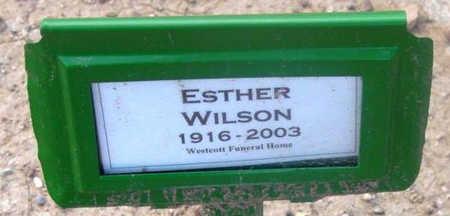WILSON, ESTHER RUTH - Yavapai County, Arizona | ESTHER RUTH WILSON - Arizona Gravestone Photos