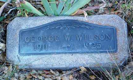 WILSON, GEORGE W. - Yavapai County, Arizona | GEORGE W. WILSON - Arizona Gravestone Photos