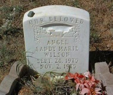 WILSON, SANDY MARIE - Yavapai County, Arizona | SANDY MARIE WILSON - Arizona Gravestone Photos