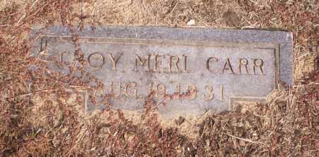 CARR, TROY MERL - Cleveland County, Arkansas | TROY MERL CARR - Arkansas Gravestone Photos