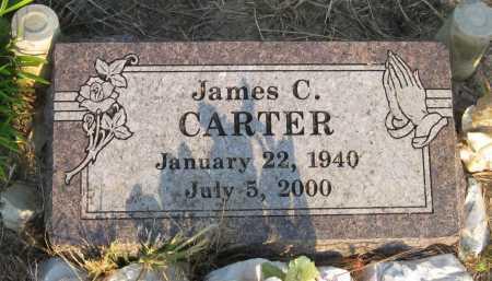 CARTER, JAMES C - Cleveland County, Arkansas   JAMES C CARTER - Arkansas Gravestone Photos