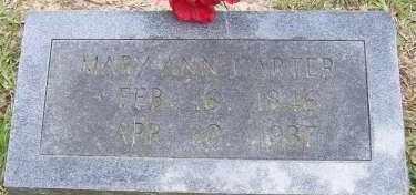 CARTER, MARY ANN - Cleveland County, Arkansas | MARY ANN CARTER - Arkansas Gravestone Photos
