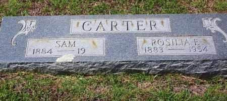 CARTER, ROSILIA E - Cleveland County, Arkansas   ROSILIA E CARTER - Arkansas Gravestone Photos