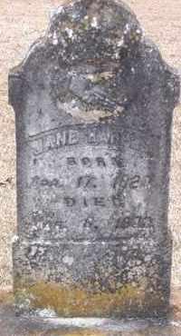 HARPER, JANE - Cleveland County, Arkansas | JANE HARPER - Arkansas Gravestone Photos