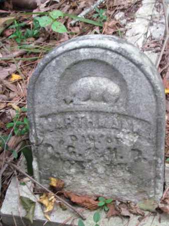 HENRY, MARTHA ANN - Cleveland County, Arkansas | MARTHA ANN HENRY - Arkansas Gravestone Photos