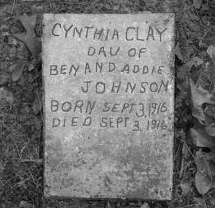 JOHNSON, CYNTHIA CLAY - Cleveland County, Arkansas | CYNTHIA CLAY JOHNSON - Arkansas Gravestone Photos