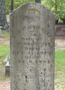 JOHNSON, D M - Cleveland County, Arkansas | D M JOHNSON - Arkansas Gravestone Photos