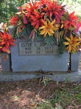 JOHNSON, ESTER L - Cleveland County, Arkansas | ESTER L JOHNSON - Arkansas Gravestone Photos