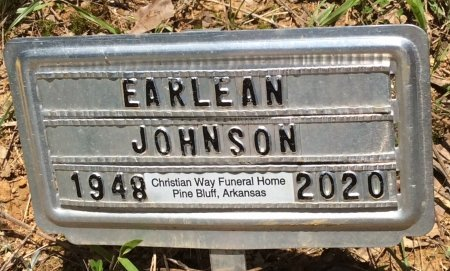 JOHNSON, EARLEAN - Cleveland County, Arkansas | EARLEAN JOHNSON - Arkansas Gravestone Photos