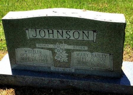 JOHNSON, MARY - Cleveland County, Arkansas | MARY JOHNSON - Arkansas Gravestone Photos